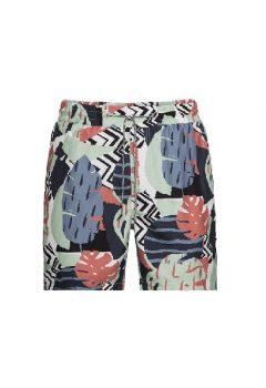 organic-Swim Shorts-recolution-M120-S11-I07_sized